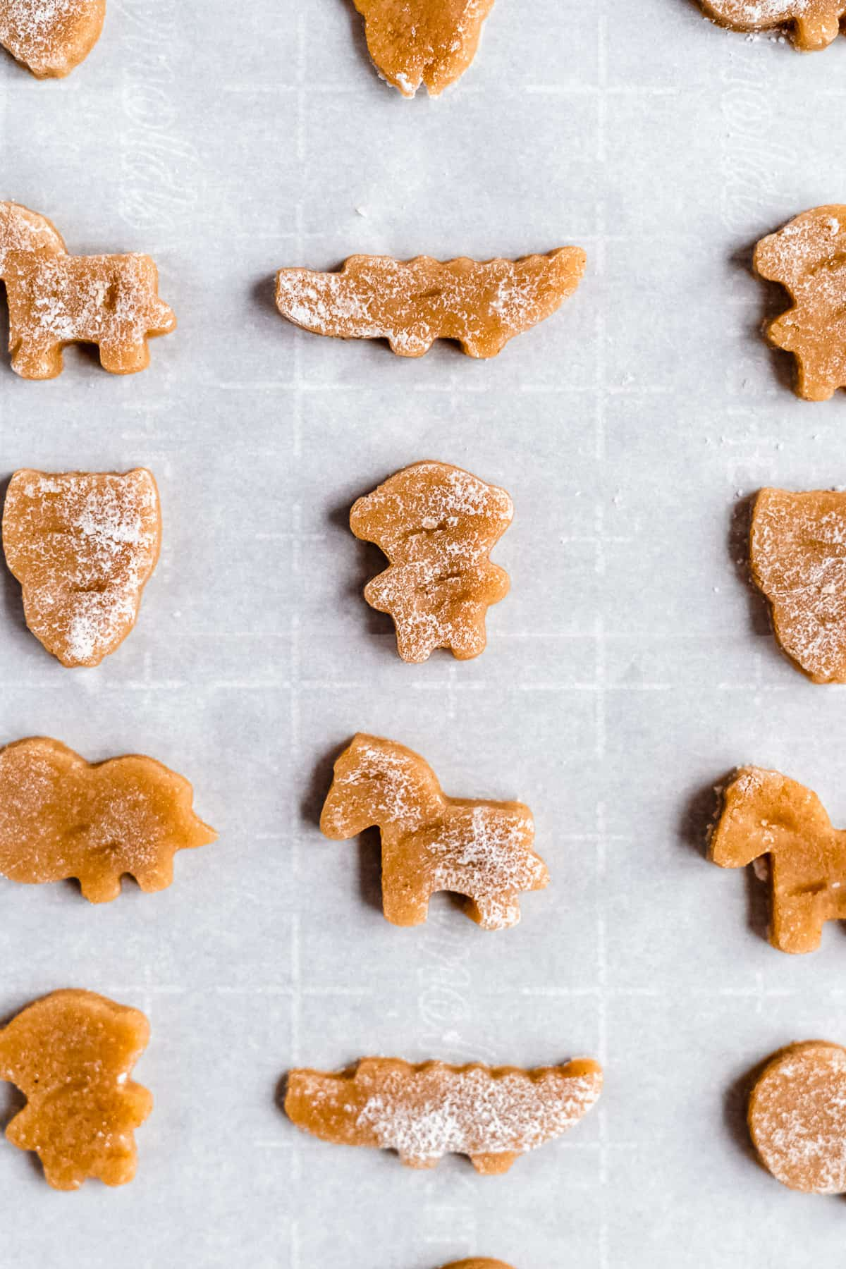 Cookie dough shaped like animals on a piece of white parchment paper.